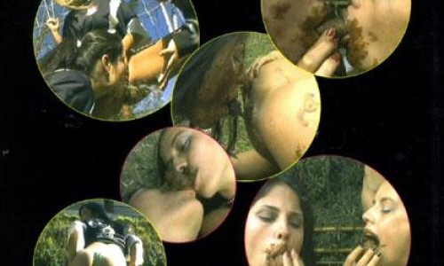 Lesbian Erotic Scat 2 Sg-video