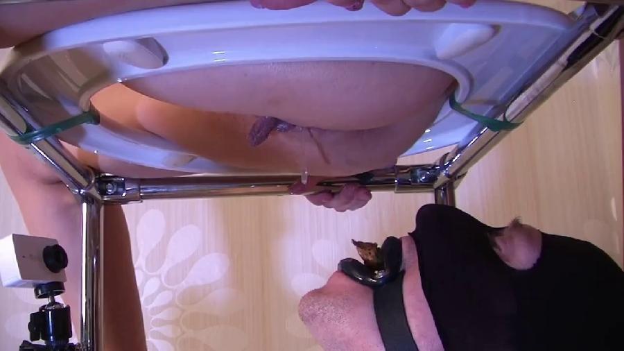 princess mia -new toilet chair